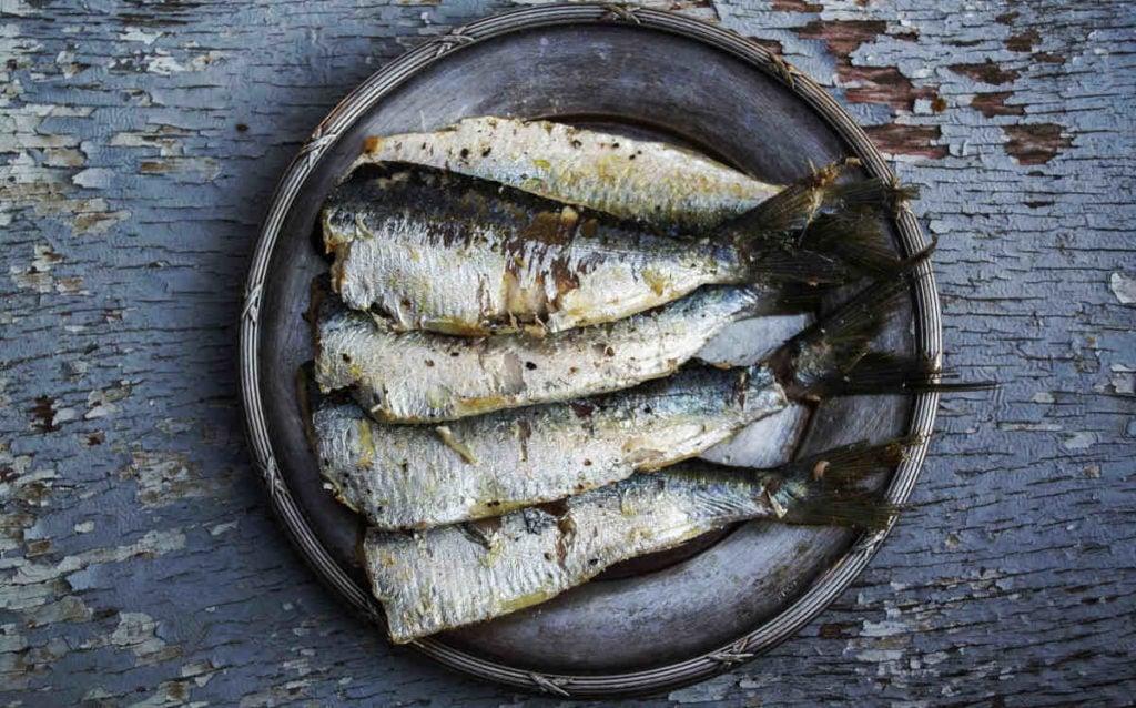 Fed fisk og skaldyr er en god kilde til omega 3