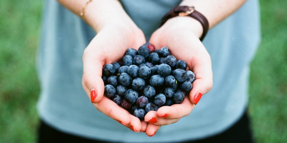 Blåbær er rige på antioxidanter som kan booste dit immunforsvar